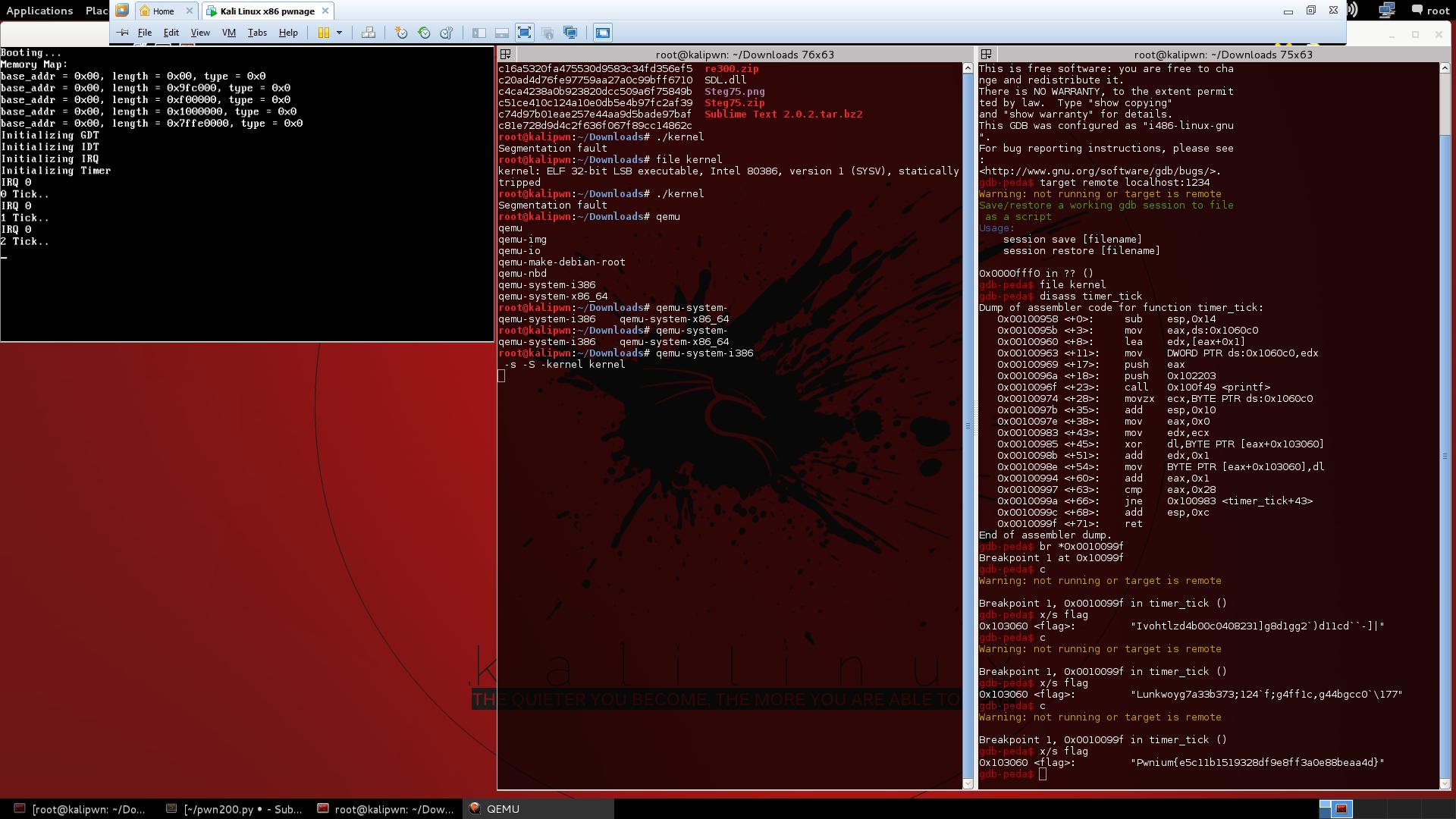 flag-debugging
